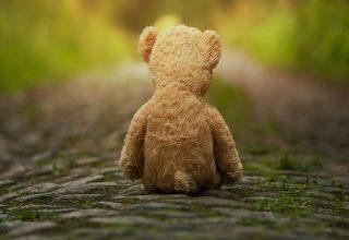 Atuação em Violência Sexual Infantil e Adulto: Teoria e Prática